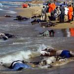 Cadaveri di migranti deceduti